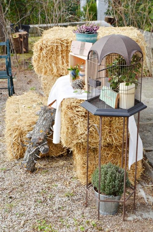 bodegón de alpacas y jaula
