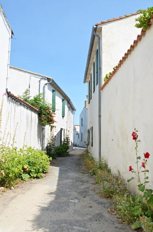 Callejuela en Sainte-Marie-de-Ré