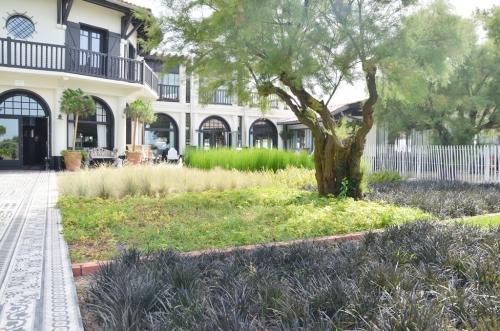 Jardín de plantas aromáticas  Hotel La Co(o)rniche