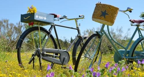 El Mercado de la Vida bicicletas personalizadas