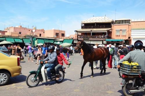 Plaza Jamaa el Fna Marrakech caballo