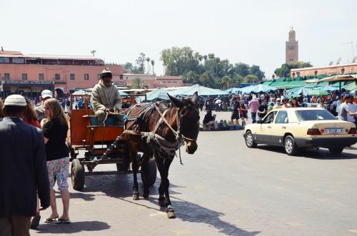 Plaza Jamaa el Fna Marrakech carro tirado por burro