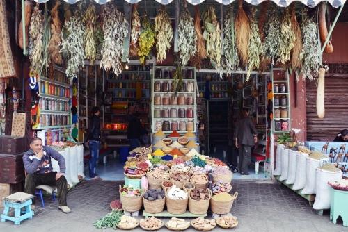 Zoco Marrakech tiendas de especies