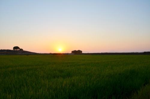 Cabanas no Rio Comporta arrozal puesta de sol