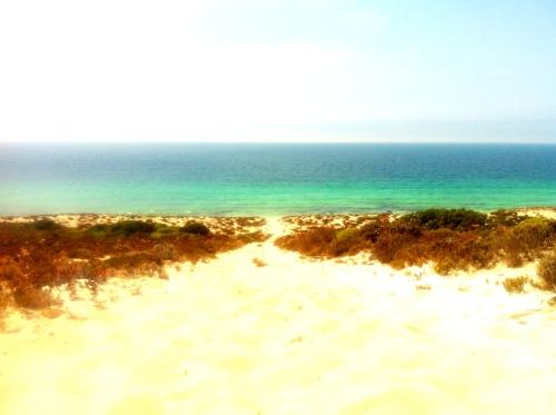 Playa de Comporta camino desde la duna