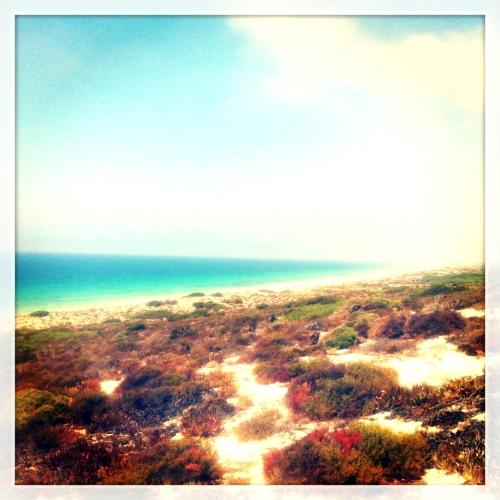 Playa de Comporta desde la duna